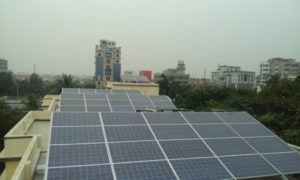 St. Xavier's rooftop plant_1